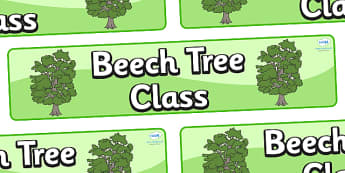 Beech Themed Classroom Display Banner - Themed banner, banner, display banner, Classroom labels, Area labels, Poster, Display, Areas