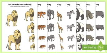 Zoo Animals Size Ordering - EYFS, Early Years, KS1, Key Stage 1, Zoo, Animals, Maths, Mathematics, Size, Measure.