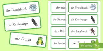 Der Lebenszyklus des Frosches Wort- und Bildkarten - Frühling, Frosch, Lebenszyklus, Teich, Kaulquappe, spring, frog, life cycle, pond, tadpole,German