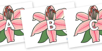 A-Z Alphabet on Lilies - A-Z, A4, display, Alphabet frieze, Display letters, Letter posters, A-Z letters, Alphabet flashcards