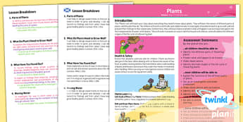 PlanIt - Science Year 3 - Plants Planning Overview CfE - plants, science, planit, 3, overview, planning, scotland, curriculum, excellence, scottish, cfe