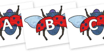A-Z Alphabet on Bad Tempered Ladybird to Support Teaching on The Bad Tempered Ladybird - A-Z, A4, display, Alphabet frieze, Display letters, Letter posters, A-Z letters, Alphabet flashcards