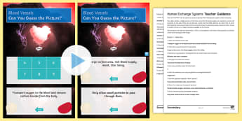 Human Exchange Systems Quick Quiz - oxygenated blood, heart, capillaries, villi, alveoli