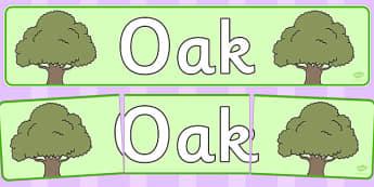 Oak Display Banner - tree, oak, display, banner, woods, header, forest