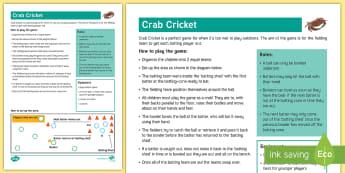 Crab Cricket Indoor Cricket Game Adult Guidance - batting, bowling, teamwork, fielding, striking, rounders, wet play, indoors, rain