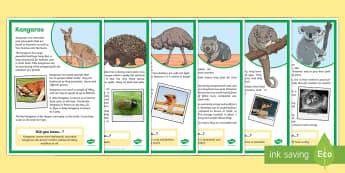 Australian Animals Factfile Display Posters - Literacy, australian animals, factfile, information, diet, habitat, Australia, animals, reading, com
