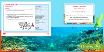 Under the Sea Small World Play Idea and Printable Resource Pack - sea, ocean, under water, seal life, sea creatures, fish, diving, role-play, imaginative play