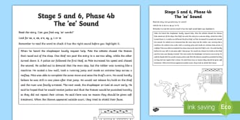 Northern Ireland Linguistic Phonics Stage 5 and 6, Phase 4b, 'ee' Sound Text Activity Sheet  - NI, Worksheet, sound search, text