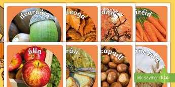 Autumn Display Photo Cut-Outs Gaeilge - fómhar, gaeilge, aimisir, weather, seasons, séasúr,Irish