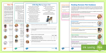 SATs Survival Year 6: Reading Revision Activity Mat Pack3 - SATs Survival Materials Year 6, SATs, assessment, 2017, English, SPaG, GPS, grammar, punctuation, sp