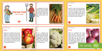 KS1 Harvest Food Fact Cards - Festival, Autumn, Vegetables, Farm, Celebration