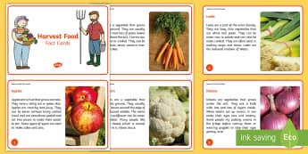 KS1 Harvest Food Fact Cards - Festival, Autumn, Vegetables, Farm, Celebration