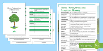 Plants, Photosynthesis and Ecosystems Glossary - Glossary, plants, photosynthesis, carnivore, omnivore, predator, prey