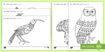 New Zealand Extinct Birds Mindfulness Colouring Pages - Aotearoa, native birds, extinct, Year 1-3, birds, fact file, colouring pages, mindfulness