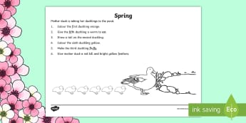 Spring Colouring Activity Sheet - Special Education, colour, literacy, ducks, Seasons, positional language, first, second, Worksheet,