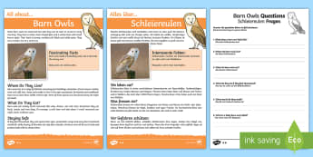 Barn Owls Differentiated Reading Comprehension Activity English / German - animals, woodlands, forest, nocturnal, EAL, German,