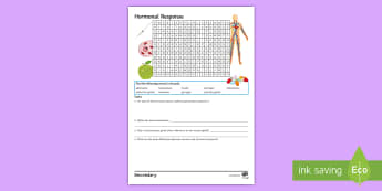 Hormonal Response Word Search - endocrine system, pituitary gland, homeostasis, hormones, glucagon