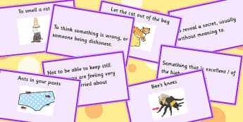 Animal Idioms Matching Cards - animal, idioms, matching, cards