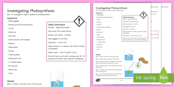 Photosynthesis Investigation Instruction Sheet Print-Out - Investigation Help Sheet, science practical, method, instructions, photosynthesis, starch test, leaf