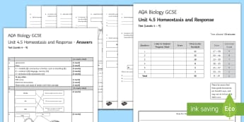 AQA Biology Unit 4.5 Homeostasis and Response Test - KS4 Assessment, Test, homeostasis, response, brain, eye, body temperature, medulla, iris, pupil