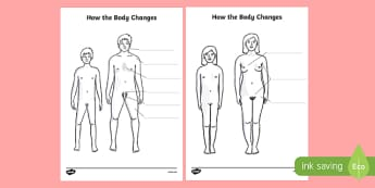 How Your Body Changes During Puberty Labelled Diagram - the human body, how the body changes, puberty, bodily changes labelled diagram, growth worksheet