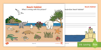 What's Wrong with the Beach Habitat? Activity Sheet - ACSSU211, Australian coast, seaside, Australian animals, Year 1 science, worksheet