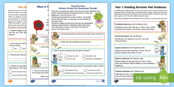 Year 1 Reading Revision Activity Mat Pack 1 - Comprehension, assessment, Fiction, Non-Fiction, poetry