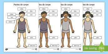 Partes do corpo, cabeça e ombros, legendagem - corpo, corpos, parte do corpo, fisionomia, biologia, ciencia
