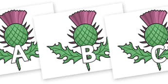 A-Z Alphabet on Scottish Thistles - A-Z, A4, display, Alphabet frieze, Display letters, Letter posters, A-Z letters, Alphabet flashcards