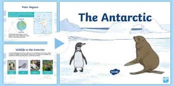The Antarctic Polar Region CfE Second Level PowerPoint - Scott, Explore, Science, ppt, animals, life, antarctic, polar