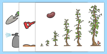 Story Cut Outs to Support Teaching on Jasper's Beanstalk - Jasper, Jasper's Beanstalk, bean, sprayed, sequencing, cut out, cut outs, cutting, story resources, story book, watered, slugs, rake, found, beanstalk, planted, cat, dig, plant, waiting, stor