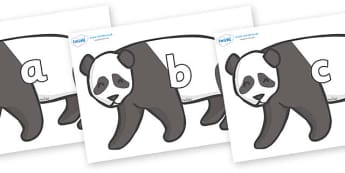 Phase 2 Phonemes on Pandas - Phonemes, phoneme, Phase 2, Phase two, Foundation, Literacy, Letters and Sounds, DfES, display