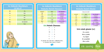 Possessive Adjectives Display Posters Gaeilge - an, aidiacht, shealbhach, grammar, irish, possessive, adjective