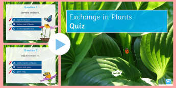 Exchange in Plants Quick Quiz - Xylem, phloem, active transport, osmosis, diffusion
