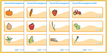 Editable Drawer - Peg - Name Labels (Harvest) - Label Templates, Resource Labels, Name Labels, Editable Labels, Drawer Labels, Coat Peg Labels, Peg Label, KS1 Labels, Foundation Labels, Foundation Stage Labels, Teaching Labels