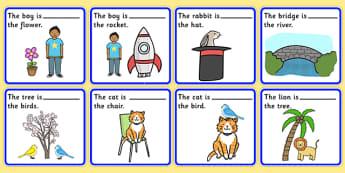 Preposition Picture Description Cards - SEN, visual aid, position, prepositions