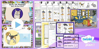 PlanIt - French Year 3 - Family and Friends Lesson 2: Pets Lesson Pack - french, languages, family, relations