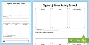 The Trees of My school Activity Sheet - ROI- National Tree Week 5th - 12th March, trees, ireland, ash, oak, beech, sycamore, horse chestnut,