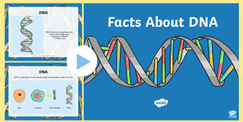 Facts About DNA PowerPoint - CfE Science, inheritance, DNA, science, powerpoint,Scottish, biology