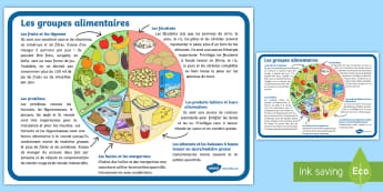Grand poster d'information : Les groupes alimentaires - alimentation, eating, sain, healthy, santé, health, malsain, unhealthy, manger, food, groupes, grou