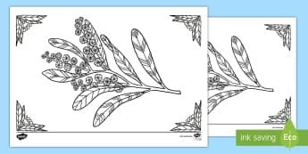 Acacia Mindfulness Colouring Page - Australian Mindfulness Colouring, ,Australia