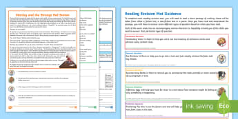 Year 4 Reading 4 Revision Activity Mat Pack - Inference, deduction, comprehension, poetry, poem, smallest animals, smallest fish, smallest reptile