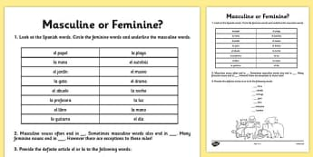 Spanish Masculine or Feminine Genders Worksheet - worksheets