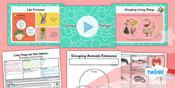 Science: Living Things and Their Habitats: Grouping Living Things Year 4 Lesson Pack 1