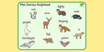 Welsh Animals Word Mat - welsh, animals, word, mat, word mat
