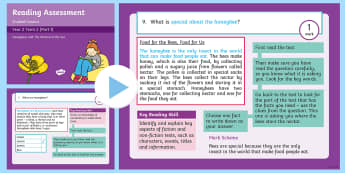 Year 2 Term 2 Paper 1 Reading Assessment Guided Lesson PowerPoint - Year 2, Y2, reading, SATS, SAT, booklet, assessment, assess, KS1, fiction, non-fiction, review, pape