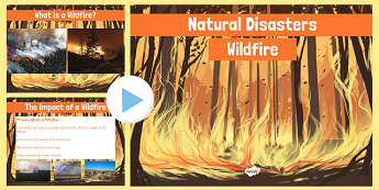 Natural Disasters Wildfire Information PowerPoint - disaster