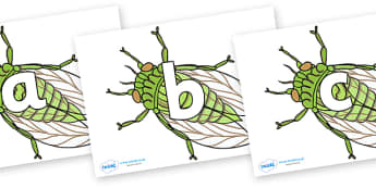 Phoneme Set on Cicada - Phoneme set, phonemes, phoneme, Letters and Sounds, DfES, display, Phase 1, Phase 2, Phase 3, Phase 5, Foundation, Literacy