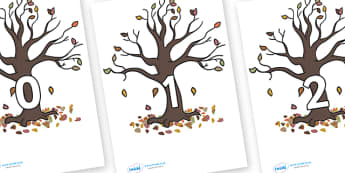 Numbers 0-31 on Autumn Trees - 0-31, foundation stage numeracy, Number recognition, Number flashcards, counting, number frieze, Display numbers, number posters