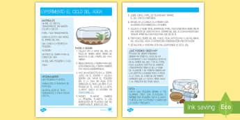 El ciclo del agua Experimento de Ciencias - el ciclo del agua, la gota clarita, el viaje, ciencias naturales, el entorno, los elementos, la lluv